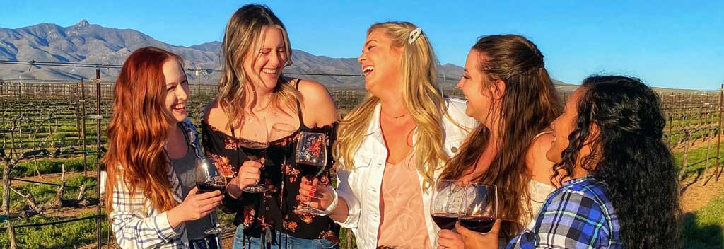 Fivesome of young ladies smiling in the vineyard